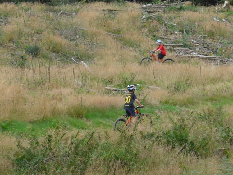 Riding the blue MTB route with our kids at Kirroughtree, Dumries, Scotland