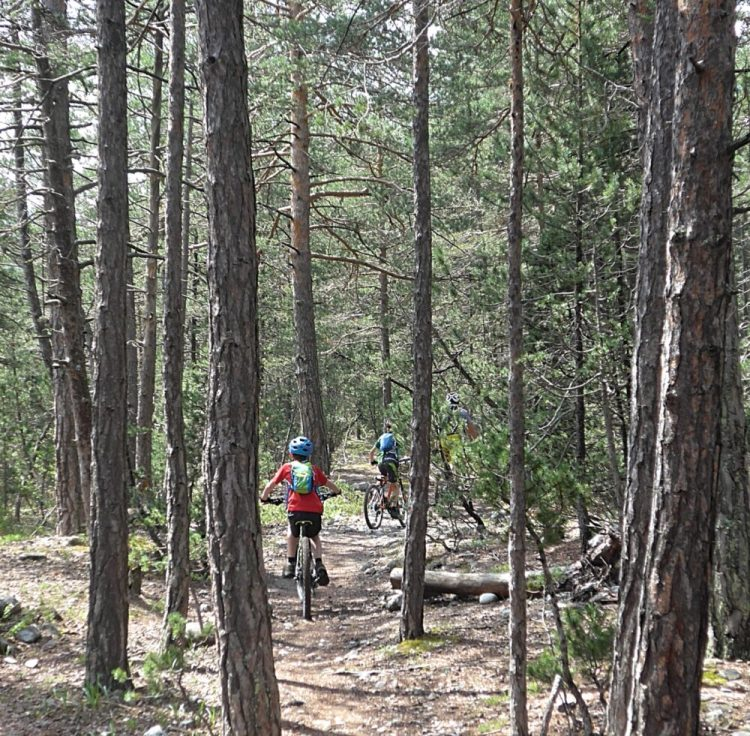 Family cycling in the Vallée de la Clarée in the French Alps - cooling forest