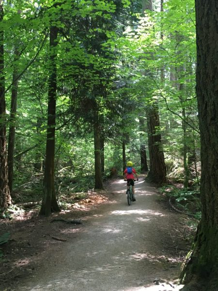 Pacific Spirit Regional Park cycling with kids
