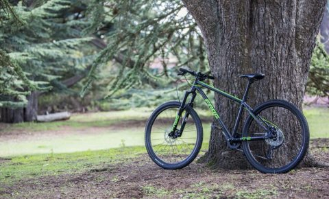 Frog mountain bikes have been launched