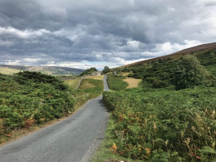 Swale Trail Road towards Reeth