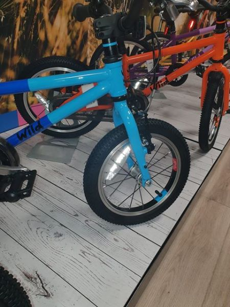 Wild Bike - a cheap kids bike