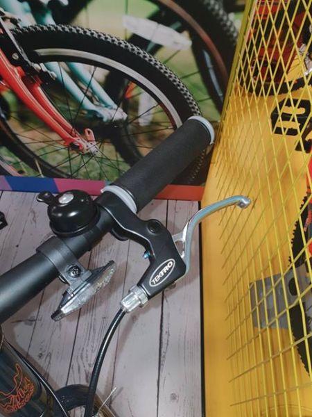 Wild Bike cheap kids bikes
