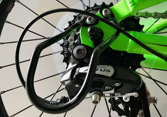 Giant ARX 20 kids bike - rear derailleur guard