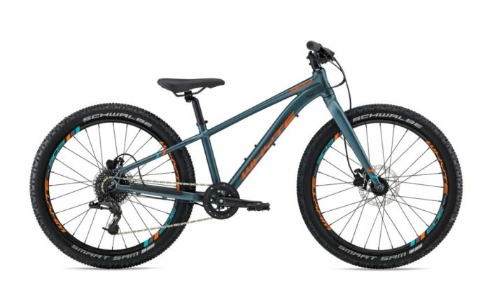 Whyte 303 24 inch kids mountain bike