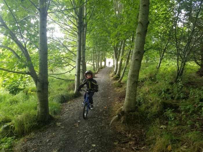 Family Cycling on the Mary Peters trails in Ireland