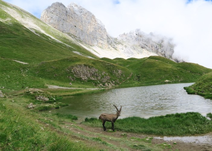 Lac de Peyre - above Col de la Colombière
