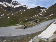 Great hairpin