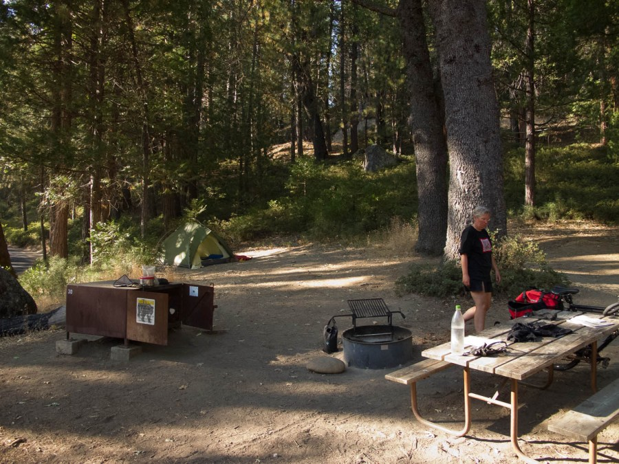typical national park camp site at Wawona (bear box, picknick table and fire place)