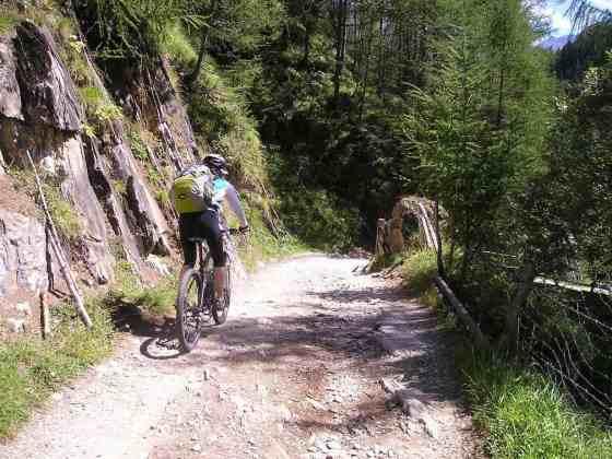 mountain bike saddle