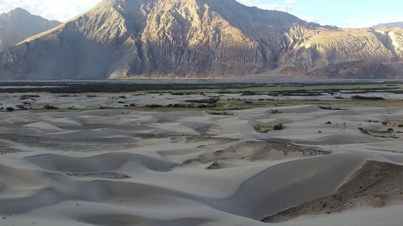Nubra Desert