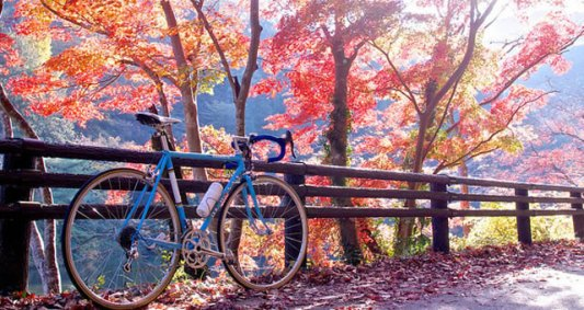 It's always good to get out on a bright Autumn day.