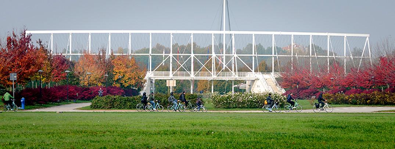 Parco San Giuliano (1)