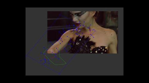 black-swan-mocha-interface