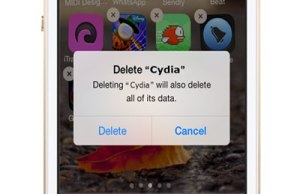 Accidentally Deleted Cydia App
