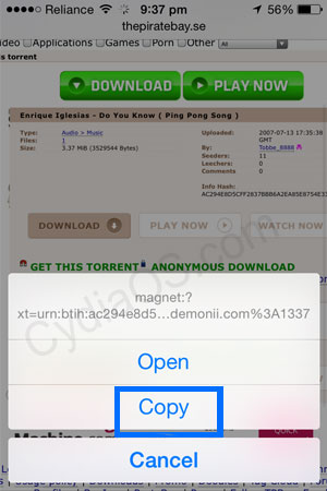 iPad torrents download