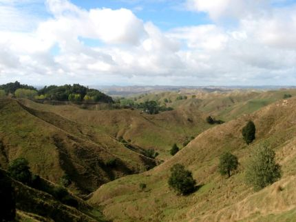 Nya Zeeland norra ön