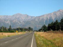 Springfield Nya Zeeland
