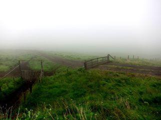 Grind i dimma på Island