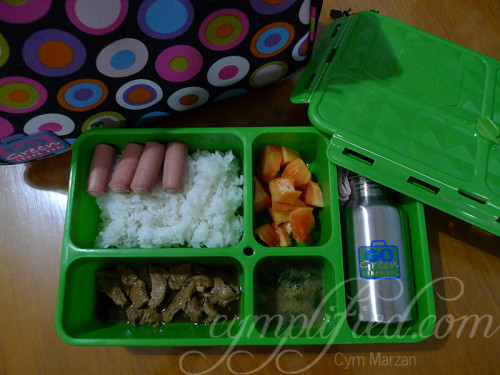 first lunch using go green lunch box