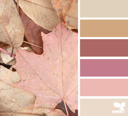 blush fall leaf tones palette from design seeds