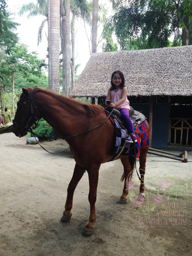 horseback riding at fun farm