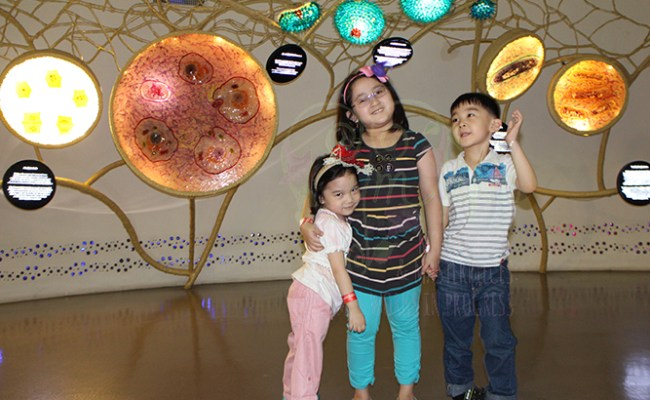 Family Day Out: Mind Museum Madness, Cymplified!