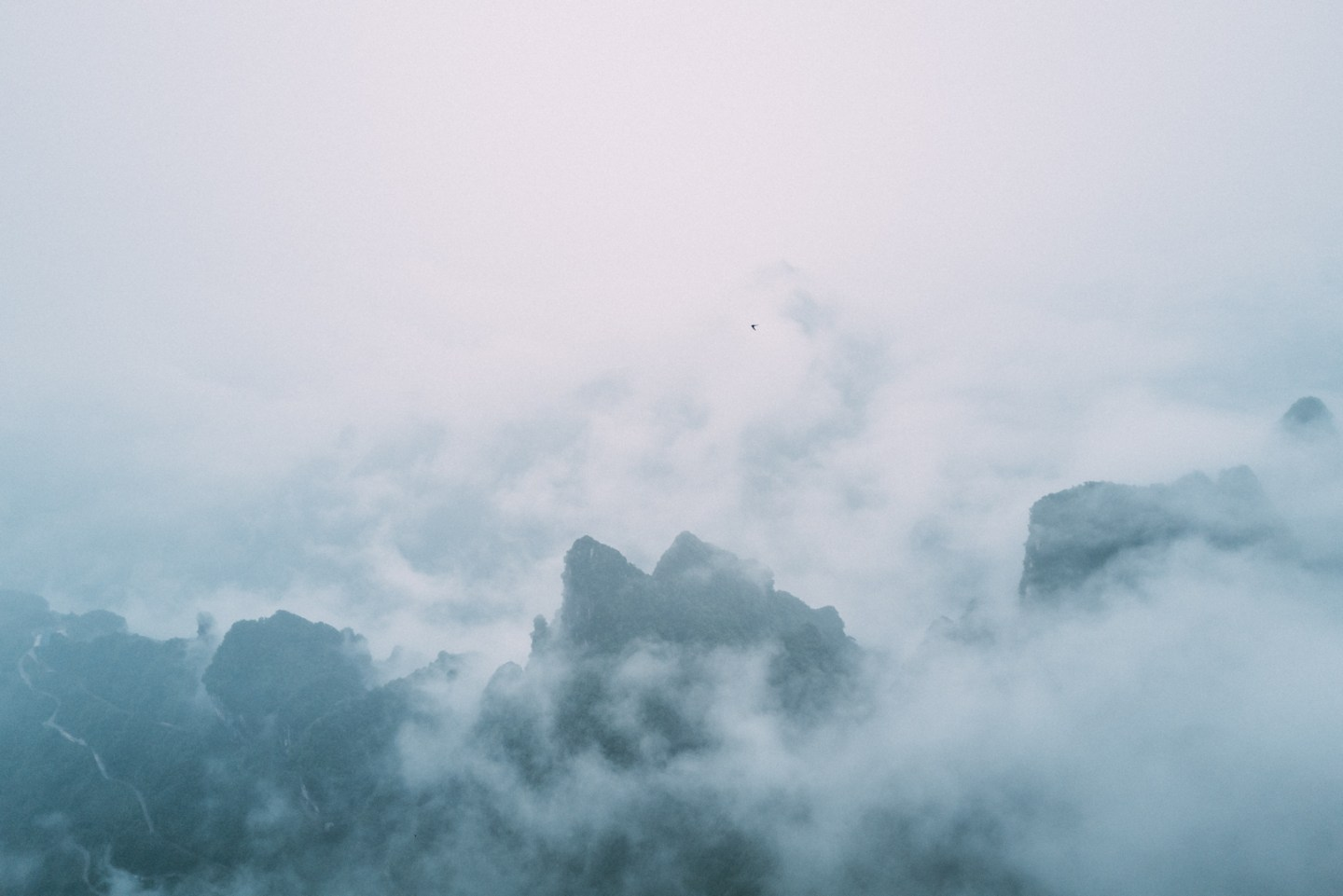 photo of the mountains with fog and a bird flying far away