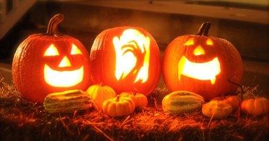 Halloween Kennel Decorating Contest at Cynosport!