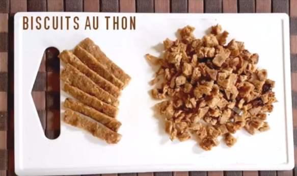 biscuits pour chien au thon