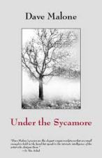 Under the Sycamore