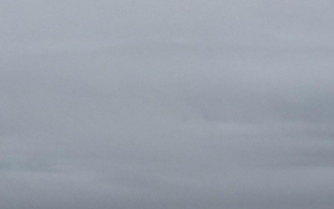 wild gray yonder: 363/365