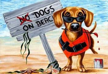 Draft Decision ADS: Determination of beaches bathing dogs