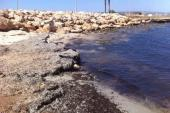 "Table Positions Areas For Dog Beaches Famagusta – Area ""Louma"""