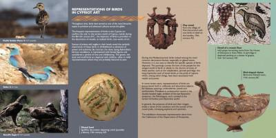 REPRESENTATIONS OF BIRDS  IN CYPRIOT ART