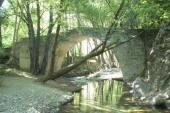 Ενετικό Γεφύρι Ρούθκια