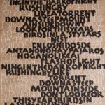 brush written Neuland capitals and pen written Roman capitals