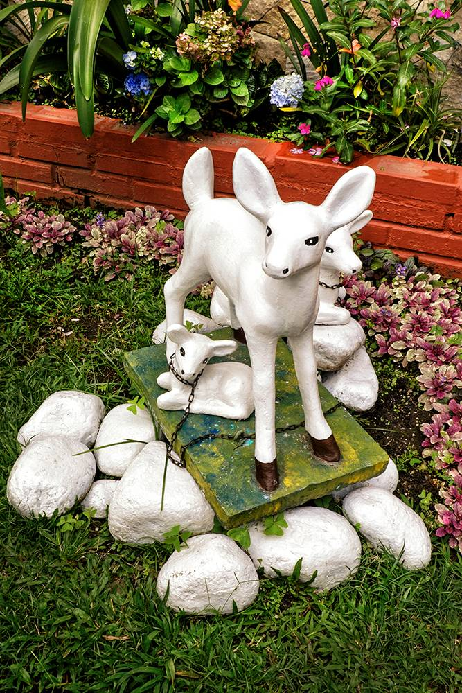 Color photo of a deer and two fawns lawn ornament chained to a concrete slab on a green lawn, surrounded by blue and purple flowers.