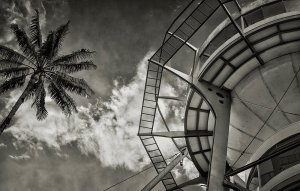 Black and white photo looking up at a water tower next to a tall palm tree.