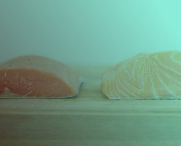wild and farmed salmon difference dapulse
