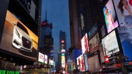 NYC New York City 2015 (17)