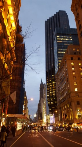 NYC New York City 2015 (28)
