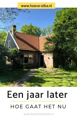 een jaar later - een jaar ons eigen bedrijf hoeve elba - mama blog mamablogger www.daanliesenkids.nl-thuisblijfmoeder 2