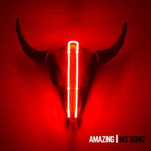Amazing - Mo_Gunz 480