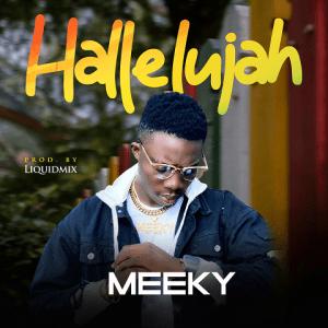 Hallelujah - Meeky 480