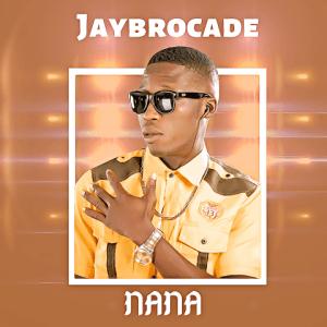 Nana - Jaybrocade 480