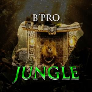 B'pro - Jungle 480