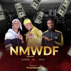 NMWDF (Remix) - P.J ft. Lilmose, Kay-Z 480