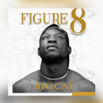 Figure 8 - Bigcat