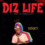 Diz Life - Densey